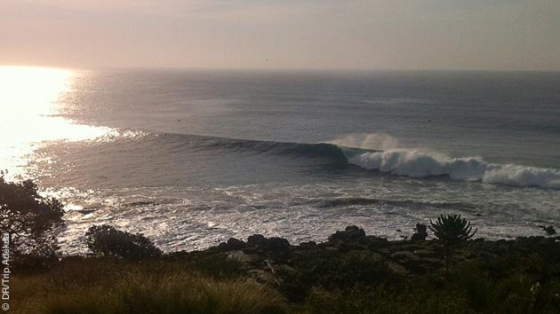Surf trip en Afrique du Sud