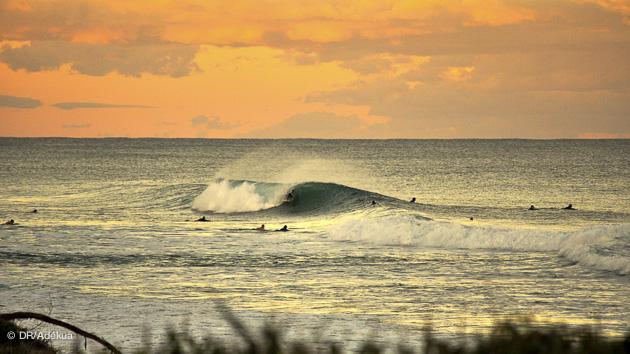 Séjour surf en Australie