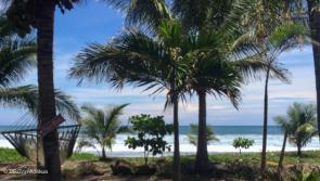 surf trip au chaud à Playa Negra au Costa Rica