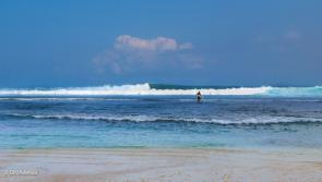 La vague d'Uluwatu, un must à surfer absolument pendant vos vacances Adekua à Bali