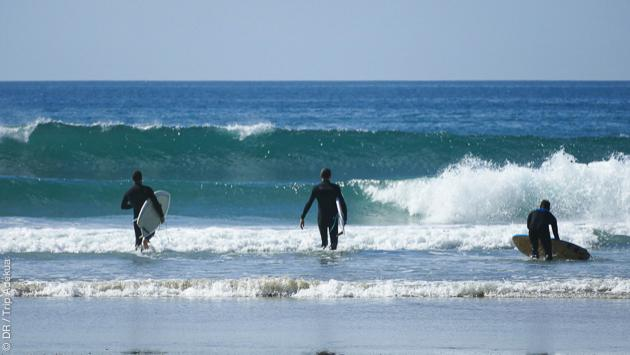 surf trip à Los Angeles