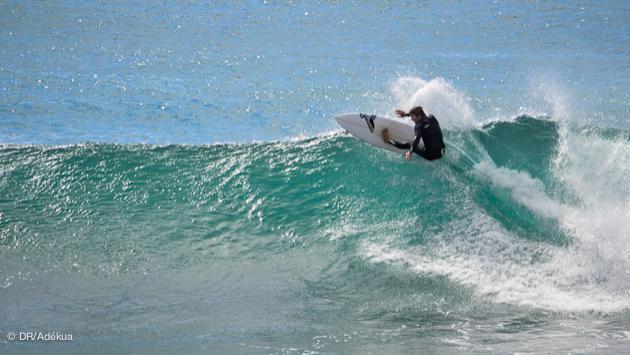 Vacances surf trip sur la Gold Coast