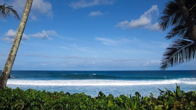 vu directe sur le mythique spot de surf de Pipeline