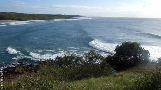 Guidés sur les spots mythiques d'Afrique du Sud par votre guide surf