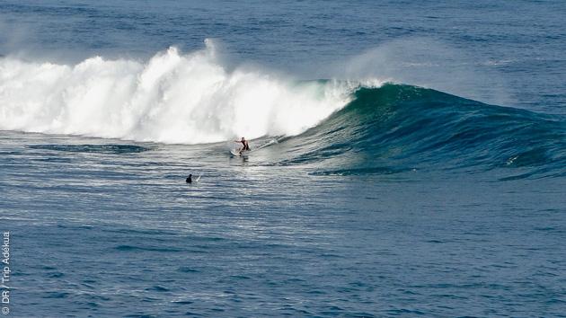 Une sélection d'excellents spots de surf entre Bidart et Saint Jean de Luz pour ce séjour