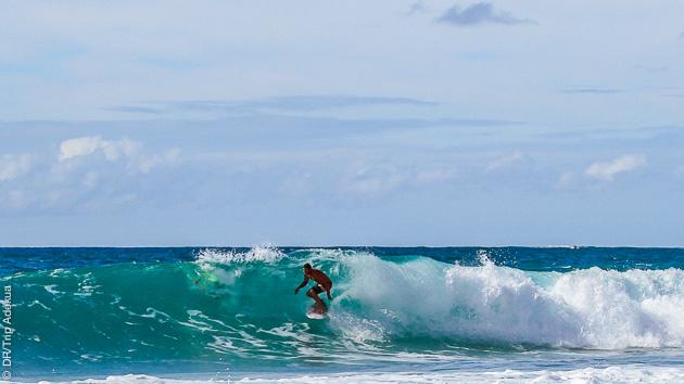 Chaque jour, le meilleur spot, pour surfer les plus belles vagues à Fuerteventura