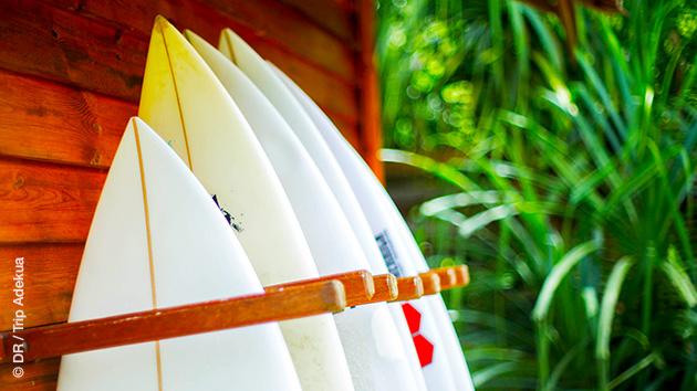 Surf, boat trip, nature sauvage et préservée : Simeulue au large de Sumatra est un petit paradis