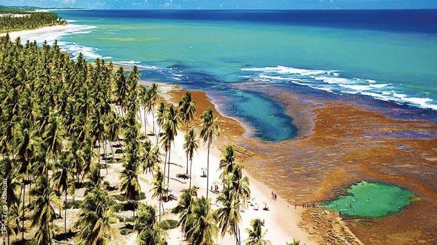 Le spot de Praia do Forte au Brésil vous réserve de belles sessions surf, kitesurf ou SUP, et de purs moments de détente