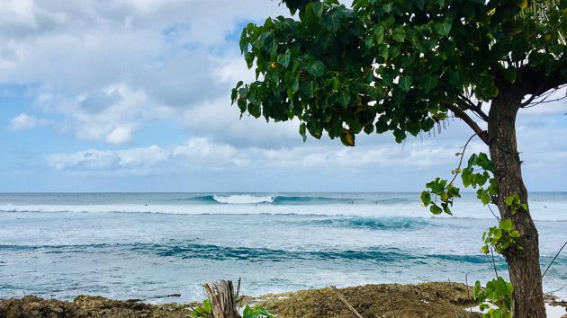 Spots de gros ou longues vagues, venez surfer à Puerto Rico