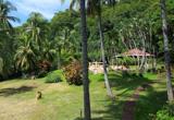 Votre hôtel dans la jungle à Montezuma - voyages adékua