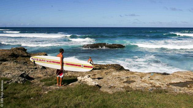 Spots de surf pour tous les niveaux, près de Saint François en Guadeloupe