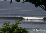 Une guest house au bord du Pacifique  - voyages adékua