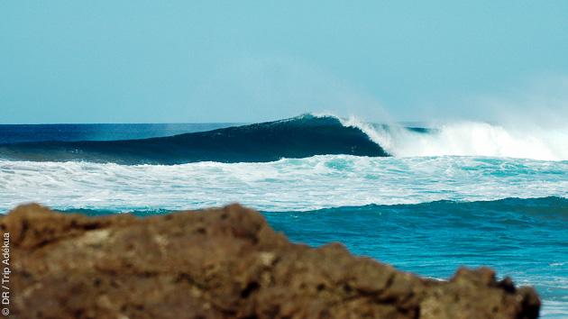 Super conditions de vagues pour des top vacances surf aux Canaries, à Fuerteventura