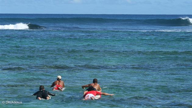 ... semaine de surf en Guadeloupe avec surf guide et logement en surfcamp