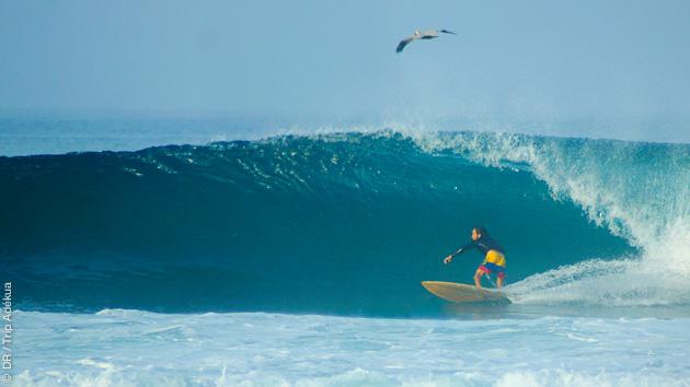 Stage de surf en Equateur, sur des spots à votre niveau