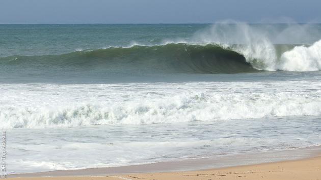 Venez surfer les plus belles vagues de Peniche au Portugal
