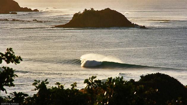 Découvrez l'île de la Martinique pendant votre surf trip avec cours et hébergement