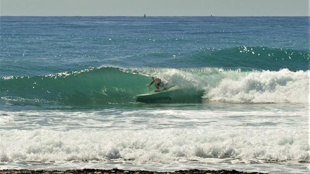 Surfez les plus belles vagues de Jamaïque pendant votre surf trip