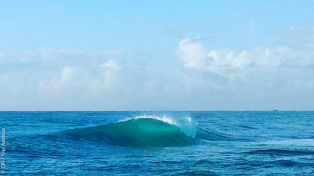 Les plus belles vagues de Jamaïques pour un séjour surf de rêve