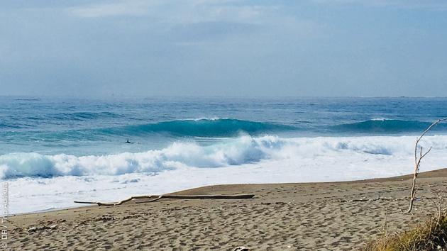Des spots de rêve pour un séjour surf confidentiel en Jamaïque