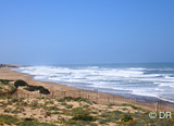 Une vague aux confins du désert de plusieurs centaines de mètres - voyages adékua