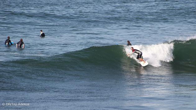 Venez progresser en surf sur les meilleurs spots du Maroc