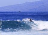 Tenerife, une île à mille facettes à découvrir en famille - voyages adékua