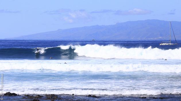 Guiding surf et cours pour tous les niveaux à Tenerife