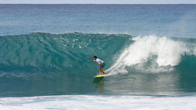 Stage surf en Guadeloupe